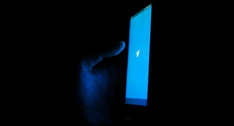 Twitter Perfiles Profesionales Nueva Funcion Prueba en Estados Unidos Unsplash