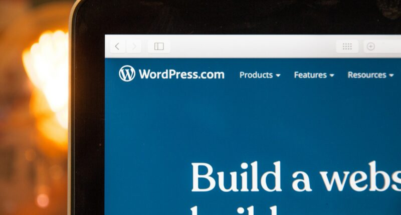 Usuarios de WordPress FLoC Google Unsplash